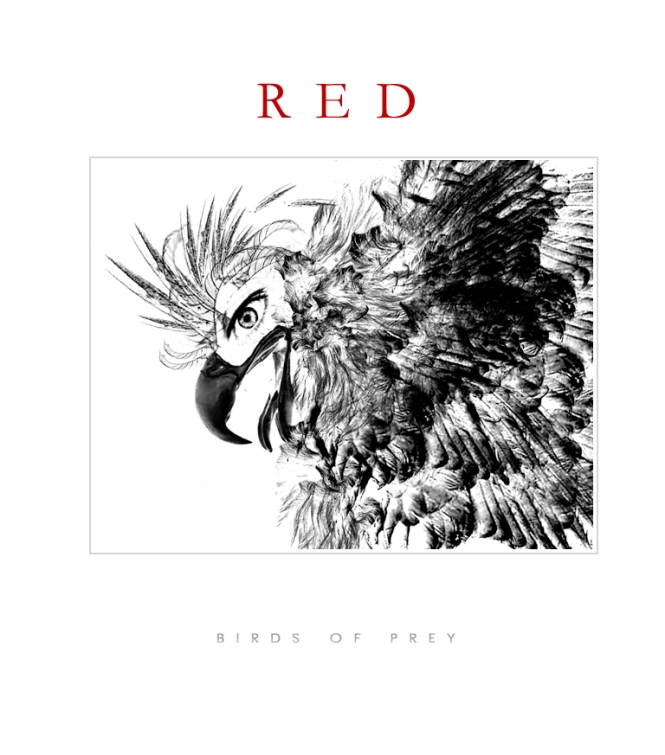 RED - BIRDS OF PREY